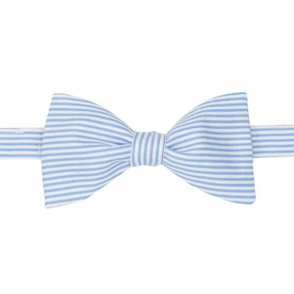 noeud papillon à rayures bleu